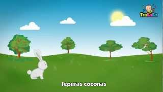 Cantec Iepuras coconas