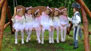 Lollipops -Cantec Miau