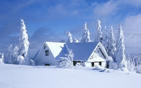Poezia -Iarna de V Carianopol