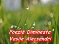 Poezia Dimineata – Vasile Alecsandri