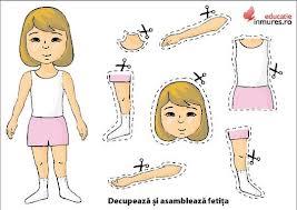Ghicitori anatomice